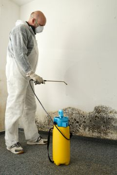 Rotonda West Mold Removal Prices by Services 3,2,1 Corp